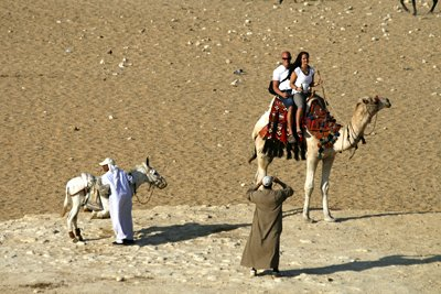 Camels and touts in the Egyptian desert