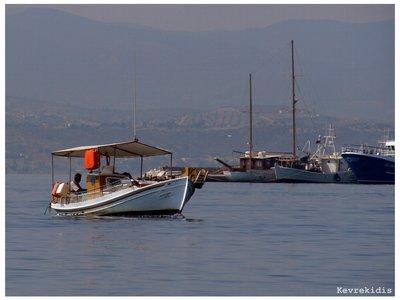 Greek_Fish..rekidis.jpg