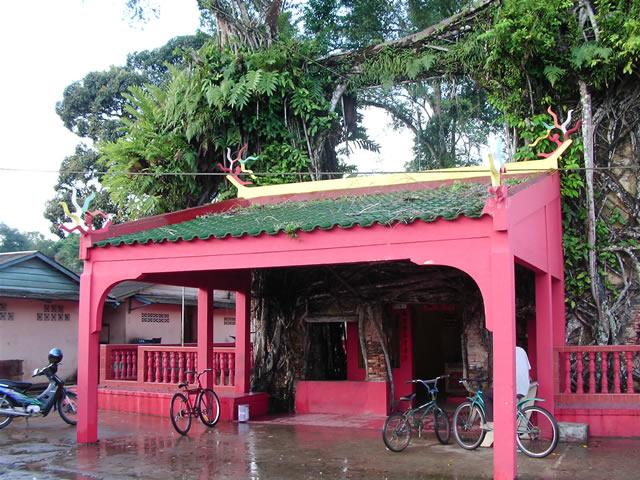 Senggarang Banyan Tree Temple