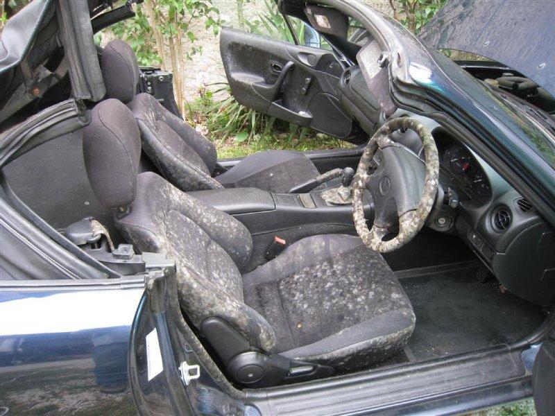 large_Mouldy_car__Large_.jpg