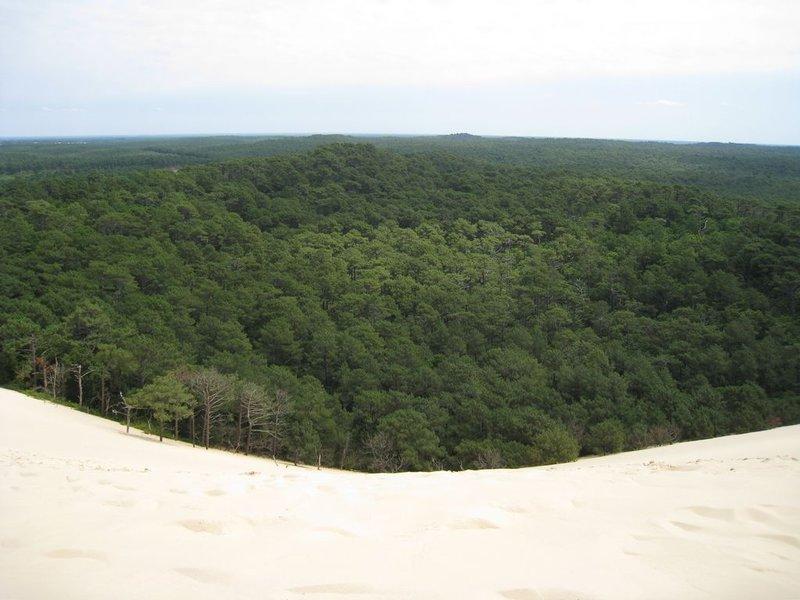 large_Sand_dune_..80x768_1.jpg