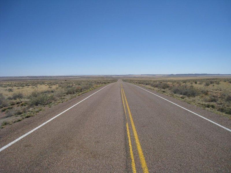 large_road_petri..80x768_.jpg