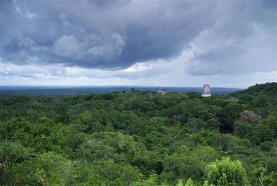 Tikal - 16