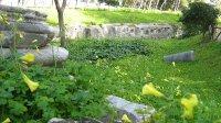 Siracusa Parco Archeologico