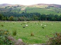 Galtee Mountains, Limerick, Ireland