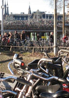 Bikes_lr.jpg