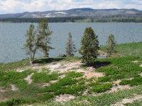 Yellow Stone Lake