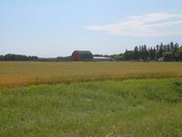 Manitoba prairie