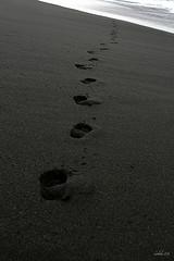 blacksand_beach.jpg