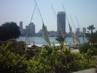 Great nile view