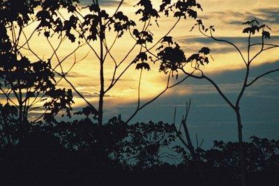 Amazonian_Sunset.jpg