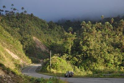 Descending Cloud Forest