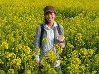 Jeju flowers
