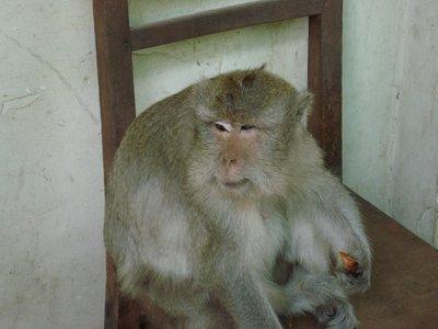 Phnom_Penh_006_resize.jpg
