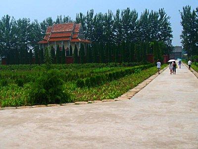 Surprise! A Thai Wat