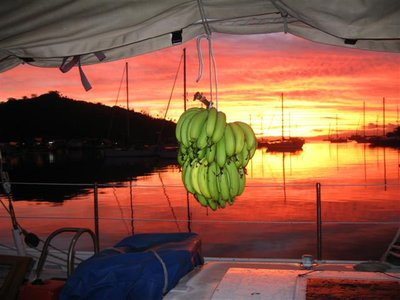 Gift Bananas and an Immortal Fiji Sunset