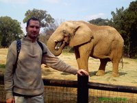 me with my elephant friend at the johanesburg zoo