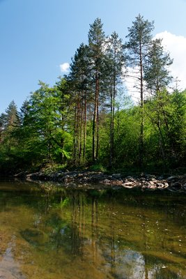Fluss Gostovic