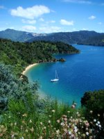 Bay near Picton