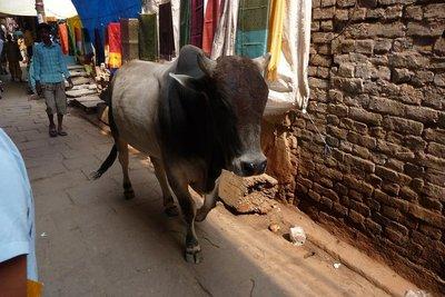 India_-_Be.._street.jpg