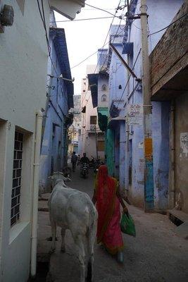 India_-_Bu..streets.jpg