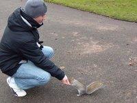 feeding squirel chester