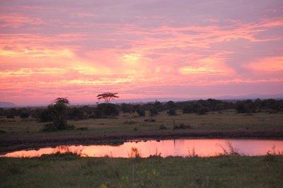 5Africa_Sma.._sunset.jpg