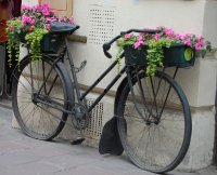 2009 387 Flower Bike Small