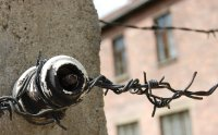 2009 437 Barbed Wire Small