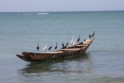 The land of TERANGA(hospitality)