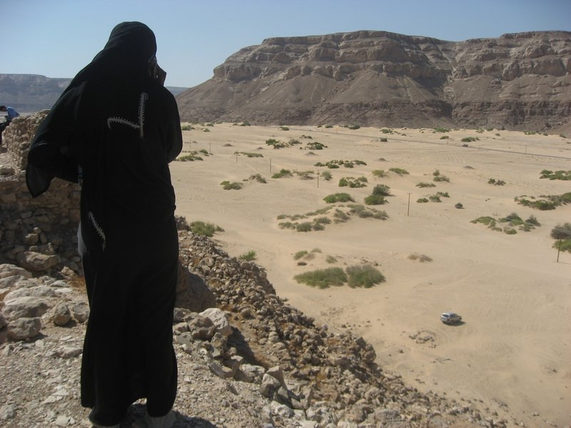 Medina looking out over Wadi Hadramawt, Yemen