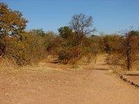Zambian_Countryside.jpg