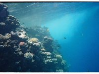 red sea(lighhouse in dahab)