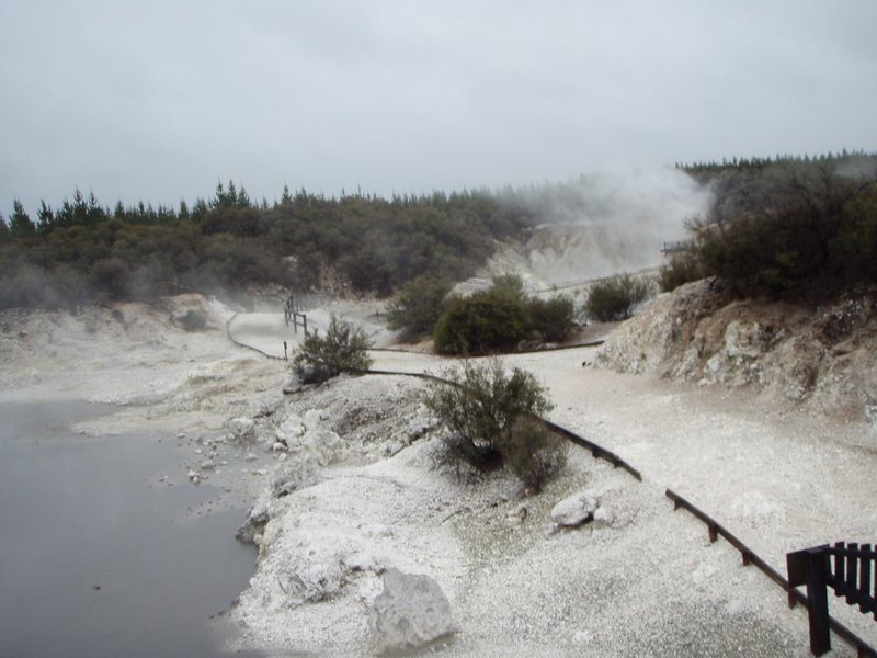 Hells gate - Rotorua