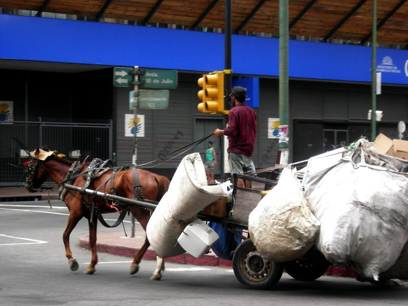 Montevideo: trash collector