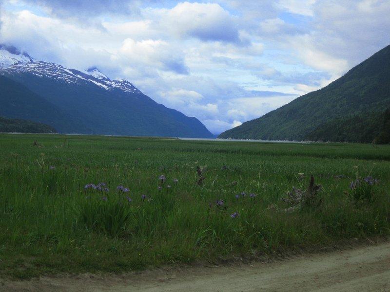Alaskan Valley