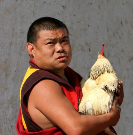Monk with a fowl
