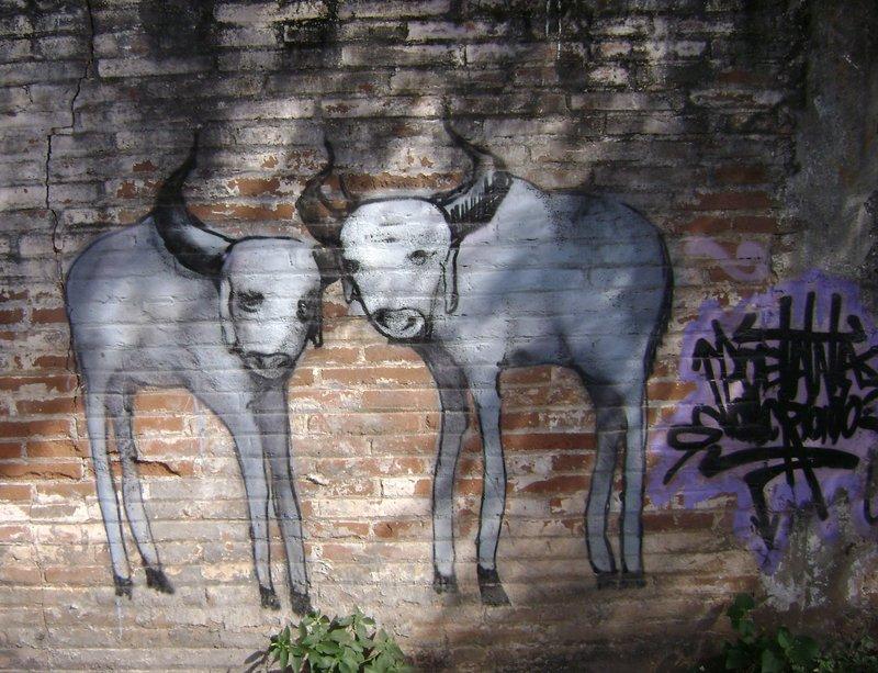 My Favourite Grafitti