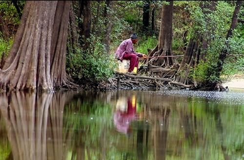 Bayou Bucket Fishing