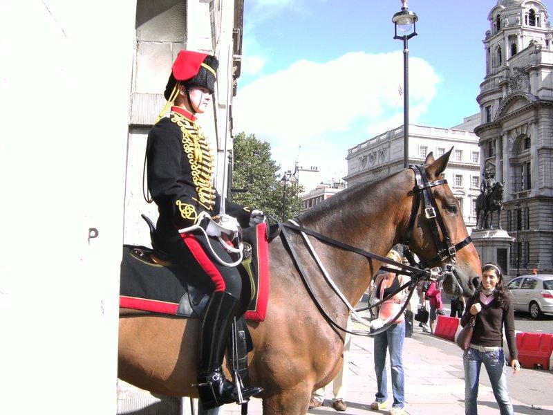 Horse's Guard
