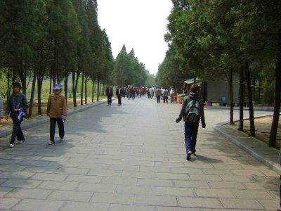 15_Path.jpg