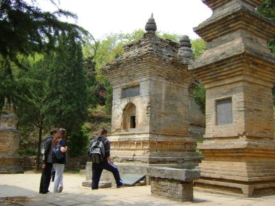 16_Pagoda_Forest1.jpg