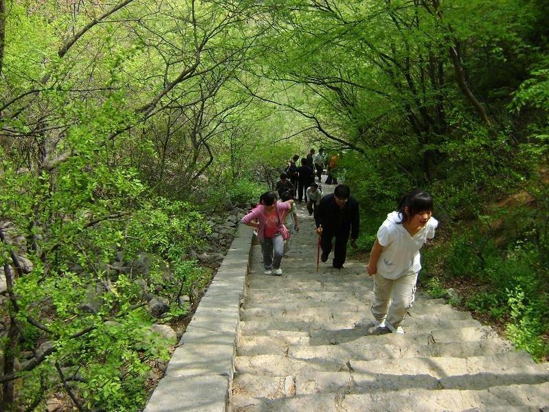 17 Path Damo3