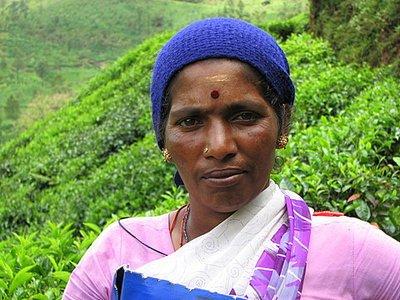 Indien_2008_1075.jpg