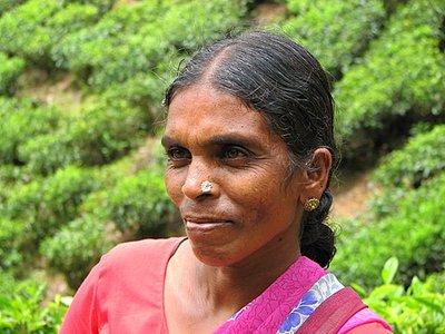 Indien_2008_1086.jpg