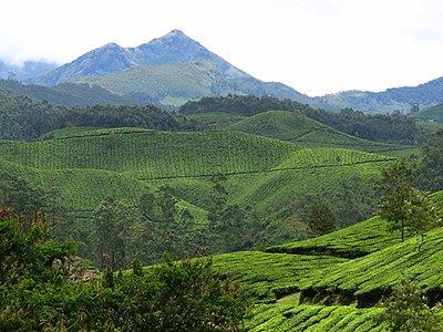Indien_2008_1143.jpg