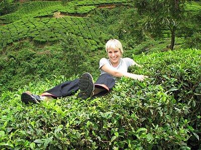 Indien_2008_1175.jpg