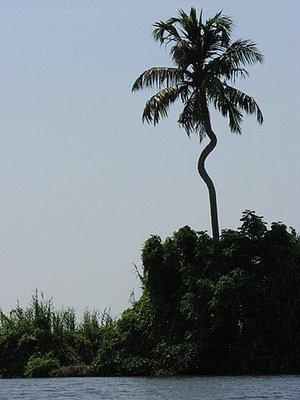 Indien_2008_848.jpg