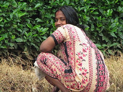 Indien_2008_911.jpg