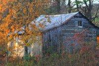barn in field, Edneyville, NC